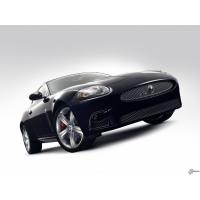 Jaguar XK обои (3 шт.)
