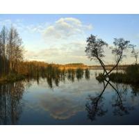 Озеро обои (6 шт.)