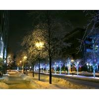Зима обои (3 шт.)