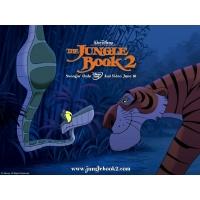 Книга джунглей2 красивое фото на рабочий стол и картинки