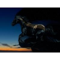 Лошади обои (4 шт.)