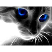 Кот из дыма c синими глазами, картинки, заставки на рабочий стол бесплатно