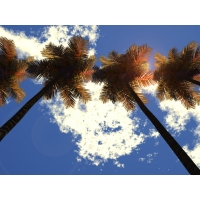 Облака 3d скачать картинки и рисунки для рабочего стола