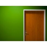 Зеленая стена, новые обои, новые картинки