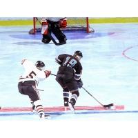 Хоккей на траве бесплатные фото на рабочий стол и картинки