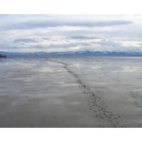 Следы на мокром песке картинки и обои рабочего стола скачать бесплатно