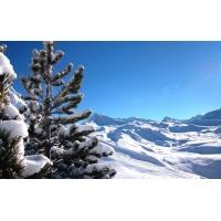 Зимний вид картинки и обои бесплатно