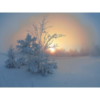 Зима картинки и прикольные обои на рабочий стол
