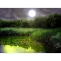 Лунная ночь скачать обои, гламурный рабочий стол