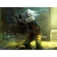 The Witcher фото обои и картинки