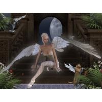 Ангелы обои (3 шт.)