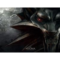 The Witcher картинки и заставки на рабочий стол