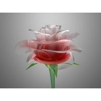 Розы обои (4 шт.)