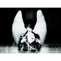 Angel обои (4 шт.)