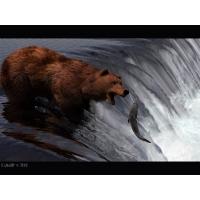 Медведи обои (3 шт.)