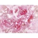 Нежно розовые