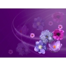 Заставка фиалок - гламурные картинки на рабочий стол и обои для рабочего стола, цветы
