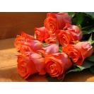 Букет алых роз картинки, фото обои и картинки