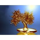 Денежное дерево 3d заставки на рабочий стол и прикольные картинки