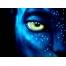 (1000х1200, 124 Kb) Аватар Джеймса Кэмерона картинки, лучшие обои для рабочего стола и картинки