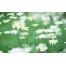 (1000х1200, 379 Kb) Ромашковое поле - картинки и обои - это крутой рабочий стол