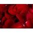 (1000х1200, 420 Kb) Нежность - гламурные картинки на рабочий стол и обои для рабочего стола