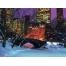 (1000х1200, 263 Kb) Центральный парк в зимнем Нью-Йорке - новейшие обои на рабочий стол и картинки