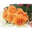 (1000х1200, 420 Kb) Рыжие розы - обои для рабочего стола