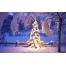 (1000х1200, 699 Kb) Светящаяся елочка - картинки, заставки на рабочий стол бесплатно