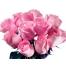 Ярко-розовые обои